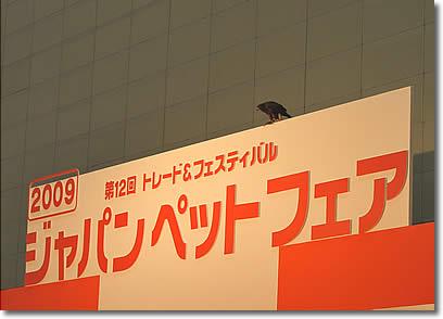 D3X_7005.jpg