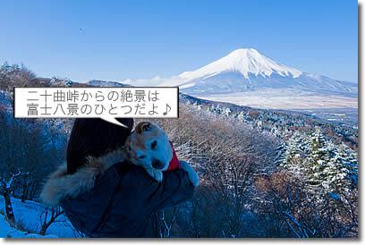 D33_7499.jpg